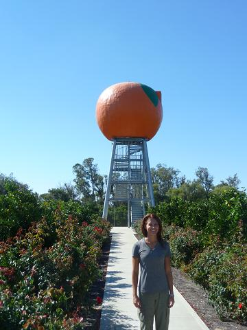 The Big Orange at Harvey, Australia