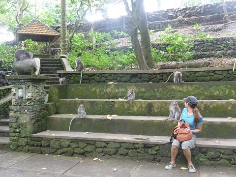 Monkey girl. Several temples in Bali are dedicated to their monkey god. They can do whatever they want to you, each other, and themselves, and you can't stop them. We saw lots of people lose hats, glasses, wallets, and flip-flops, and their happy to put on a nature show for you, if you know what I mean.
